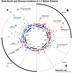 #Disease map by month of #birth