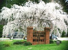 Murphy NC Map | welcome to murphy nc