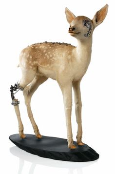 Lisa Black's bionic fawn. A kind of post-apocalyptic / steampunk taxidermy look.