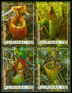 "Stamps from the Philippines: That's where the meaning ""Tropical"" is coming from..."