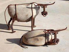 .....mucche