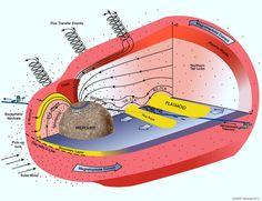 Jet Propulsion Laboratory - Mercury Magnetosphere
