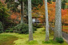 三千院 (極楽往生院) | Flickr - Photo Sharing!