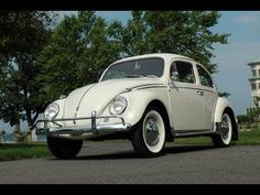 The Volkswagen VW Beetle History By AOL Autos: From its early beginning in the VW Beetle has become one the most recognizable car in the world. Check out this insightful video courtesy of AOL Autos about the rich history of the iconic Volkswagen Beetle. Vw Tiguan, Vw Passat, Vw Eos, Pontiac Tempest, Beetle Car, Vw Touareg, Volkswagen Jetta, Car In The World, Vw Beetles
