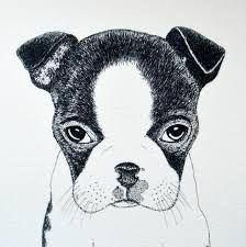 Kresba psa