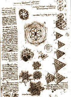 "The Monkey Buddha: ""Flower of Life"" Drawings by Leonardo da Vinci"