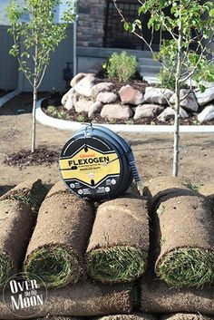 Tips for Soil Preparation Before Laying Sod Landscape Stairs, Landscape Design, Landscaping Plants, Front Yard Landscaping, Landscaping Ideas, Organic Gardening, Gardening Tips, Indoor Gardening, Sod Grass