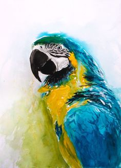 Parrot Blue Yellow Watercolour Macaw Original Animal PAINTING A3 signed Colorful