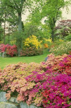 english country gardens | Beautiful English Country Gardens