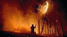 black saturday bush fires - Google Search Black Saturday, Natural Disasters, Around The Worlds, Fire, Google Search, Nature, Nature Illustration, Off Grid, Mother Nature