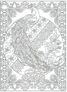peacock coloring page for adults 231