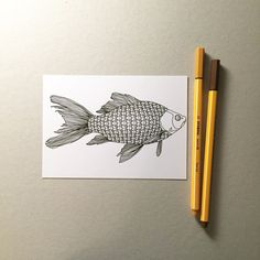 diamonds fish coloring postcard fish coloring pages for adults ocean coloring page nautical theme DIY greeting card birthday card by AnnaGrundulsDesign