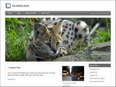 Silverclean Lite - free pet WordPress themes