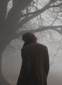 I know it isn't but it looks like it could be Sam. And it's a great picture