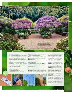 Exploring the layers: Wander the shady glades and bloom-filled borders of a famous garden brimming with glorious ideas - clipped from page 60 of Better Homes and Gardens, Jun 2014 issue by the Netpage app.