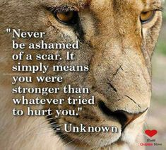 Staying strong quotes provide you a source of inspiration. Read quotes for staying strong & strong quotes about life and go through hard times. Stay Strong Quotes, Quotes To Live By, Change Quotes, Lioness Quotes, So Called Friends, Warrior Quotes, You Are Strong, Badass Quotes, Powerful Quotes