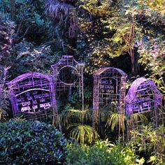 La Memoria del Jardín, Memories of the garden. Juan Garaizabal. Venice