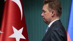 Частные компании Турции готовы подать в суд на «Газпром»