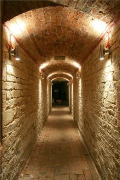 Secret tunnel to my sister's house one street over...  I wish!