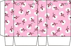 Caja bolsa (1600×1035)