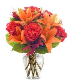 Orange Purple Blooms at From You Flowers Next Day Flowers, Thank You Flowers, Flowers For You, 800 Flowers, Orange Flower Bouquets, Rose And Lily Bouquet, Flower Colors, Christmas Plants, Christmas Flowers