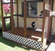 Example of a cat pen. Does not link to anything. Cat Run, Outside Cat Enclosure, Hotel Pet, Cat Fence, Cat Cages, Cat Playground, Cat Condo, Outdoor Cats, Pet Furniture