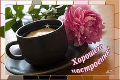 Mobile LiveInternet Pillows, Motivos | Chocolate - Diario de chocolate | Coffee Gif, Russian Online, Online Diary, Crochet Squares, Easy Crochet, Tableware, Animation, Couture, Crochet Dresses