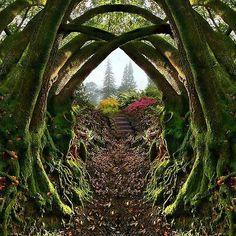Garden Entrance, Redwood Regional Park, Oakland, California