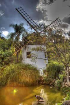 A very beautiful park in the city of Porto Alegre, southern Brazil Beautiful Park, Beautiful World, Beautiful Places, Rio Grande Do Sul, Brazil Culture, Tilting At Windmills, Le Moulin, Abandoned Buildings, Lighthouse
