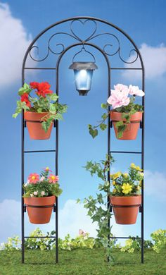 Solar Metal Scroll Garden Plant Holder and Trellis