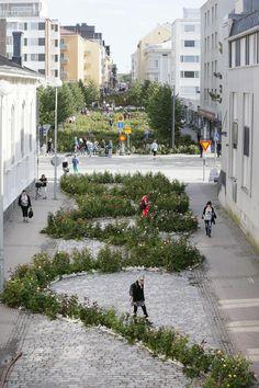 The day when Kaisa Salmi filled a large area of Oulu City in Finland with 34 000 rosebushes. Art project. | Kaisa Salmen ruusuteos Oulu Pakkahuoneenkatu | Kaleva.fi