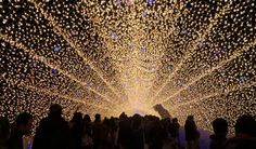 4 Spectacular Japan Winter Light Festival Guide And Photos That Will Make You Want To Witness The Light Show | http://theyolomoments.com/4-spectacular-japan-winter-light-festival-guide-and-photos-that-will-make-want-to-witness-the-light-show/