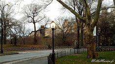 MillaMarica: New York, osa 6, Puistoja