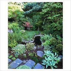 shady garden area
