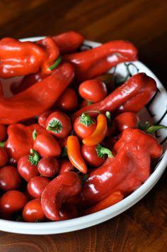 Homemade Sriracha from scratch