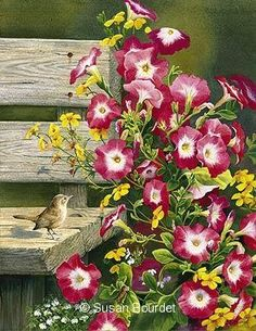 Country Garden Wren by Susan Bourdet, Watercolor