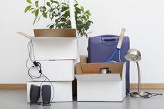 The Five Organizing Basics