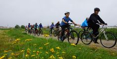 Encontro Luso-Galaico de BTT: uma prova para todas as idades Btt, Bicycle, Vehicles, Journals, Bicycle Kick, Bike, Rolling Stock, Bicycles, Vehicle