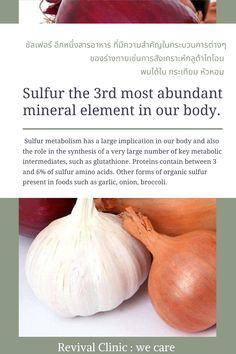 Sulfur metabolism has a large implication in our body and also the role in the synthesis of a very large number of key metabolic intermediates, such as glutathione. Proteins contain between 3 and 6% of sulfur amino acids. Other forms of organic sulfur present in foods such as garlic, onion, broccoli. Our Body, Amino Acids, Metabolism, Abundance, Broccoli, Onion, Garlic