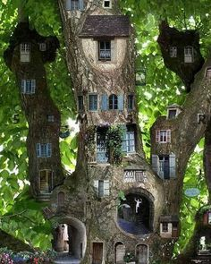Typically, Faeries have homes for their human and miniature sizes, and keep them up to date with each other using magic. They have no housekeepers, again using magic to accomplish chores, although they usually buy housekeeper charms from witches for that.  Amazing Tree House | itimes