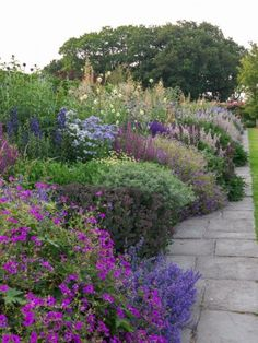 Town Place in July #gardens