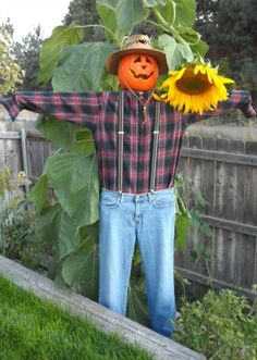 Easy, inexpensive DIY scarecrow you can use year after year to decorate for fall or Halloween. Make A Scarecrow, Scarecrow Ideas, Halloween Scarecrow, Motion Activated Sprinkler, Ag Day, Scarecrows For Garden, Diy Garden Projects, Garden Ideas, Gardens