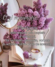 Good Morning, Decor, Buen Dia, Decoration, Bonjour, Decorating, Good Morning Wishes, Deco