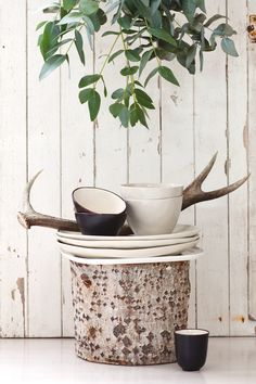 New Zealand Homewares Store - Indie Home Collective