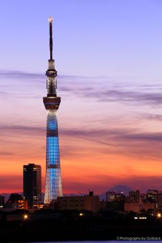 Japan Brand Design | 街並み・建物 > ビル・タワーの写真 | GANREF