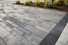 Sleek Concrete Pavers for a Modern or Contemporary Backyard Design in Bedford Hills, NY Modern Driveway, Driveway Design, Stone Driveway, Driveway Landscaping, Modern Backyard, Modern Landscaping, Concrete Paver Patio, Paver Walkway, Driveway Pavers