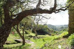 Moradia V5 para venda em Sintra • ref 6221 - 36