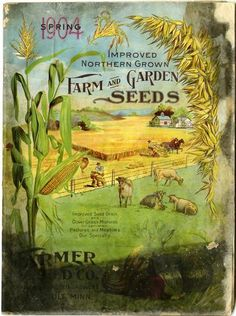 1904 promised to be a good crop year  based upon the front cover of the Farmer Seed & Nursery catalog for that year.   Bountiful crops of corn, wheat and other vegetables frame the image of farmers harvesting in fields surrounding the farmhouse and barn.  Happy cows loll lazily in an adjoining pasture.  Farmer Seed & Nursery originated in Faribault, MN in 1888. Andersen Horticultural Library hosts a collection of vintage Farmer Seed & Nursery catalogs.