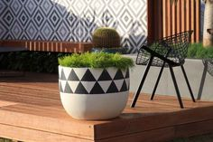 Landscapers, Landscape Design Company | Harrison's Landscaping, Sydney NSW | 2014 Australian Garden Show