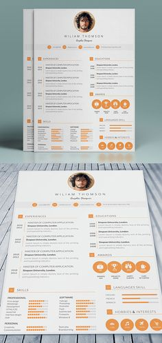 Professional Cv Template                                                                                                                                                                                 More